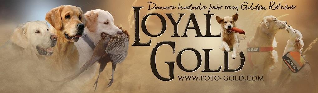 Loyal Gold FCI